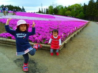 芝桜4.jpg